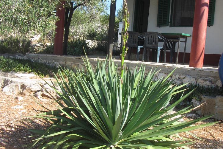 Ferienhaus House Rosemary (90381), Pasman, Insel Pasman, Dalmatien, Kroatien, Bild 39