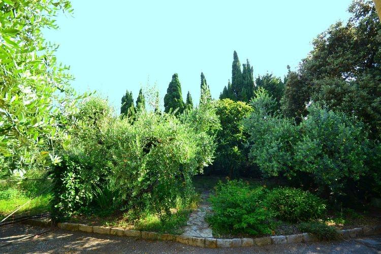 Ferienhaus Ortolano (256802), Castiglioncello, Livorno, Toskana, Italien, Bild 21