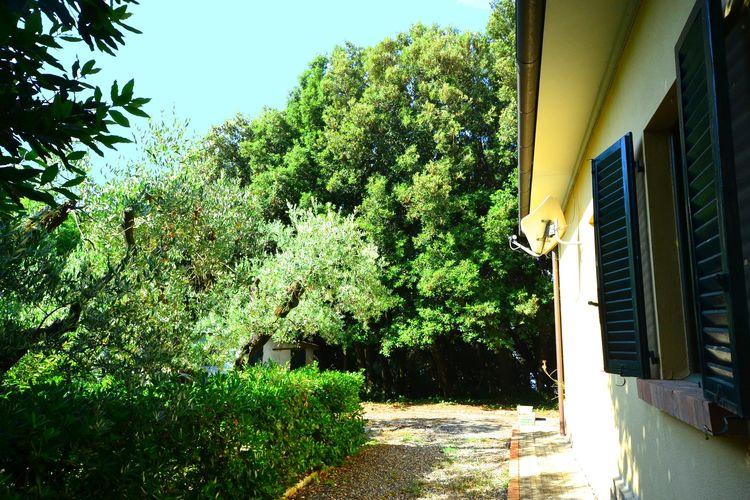 Ferienhaus Ortolano (256802), Castiglioncello, Livorno, Toskana, Italien, Bild 22