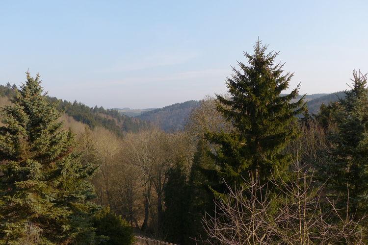 Ferienwohnung Burghof woning A (119902), Hellenthal, Eifel (Nordrhein Westfalen) - Nordeifel, Nordrhein-Westfalen, Deutschland, Bild 30