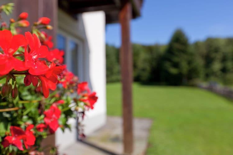 Ferienwohnung Rose (122385), Bolsdorf, Vulkaneifel, Rheinland-Pfalz, Deutschland, Bild 27