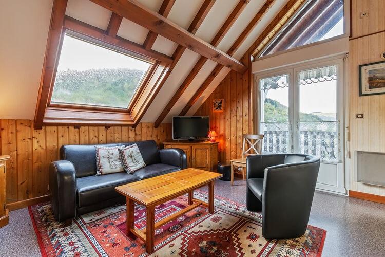 Vakantiehuizen Frankrijk | Vogezen | Appartement te huur in La-Bresse   met wifi 6 personen