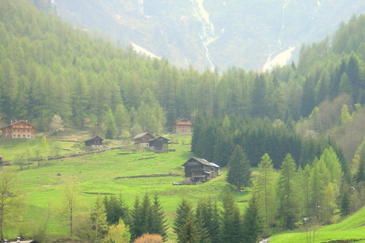 Holiday apartment Mara Trilo Sinistra (256657), Dimaro, Dolomites, Trentino-Alto Adige, Italy, picture 19