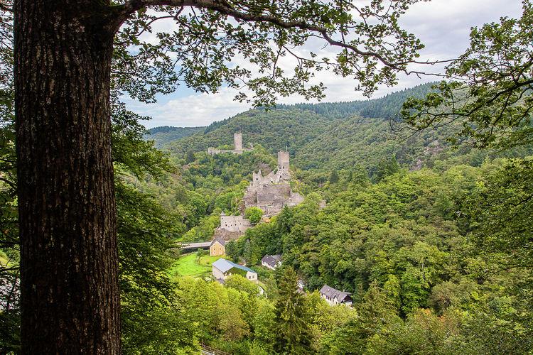Ferienwohnung Schwalbennest (134485), Strotzbüsch, Vulkaneifel, Rheinland-Pfalz, Deutschland, Bild 20