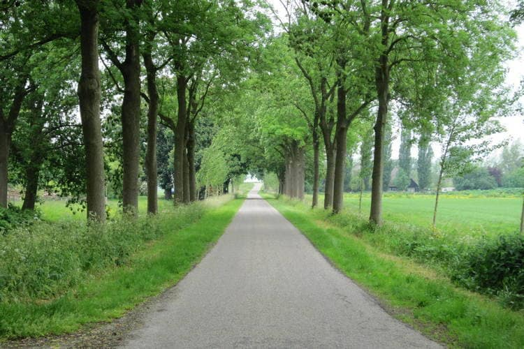 Holiday house Silence II (134074), Noordbeemster, , North Holland, Netherlands, picture 34