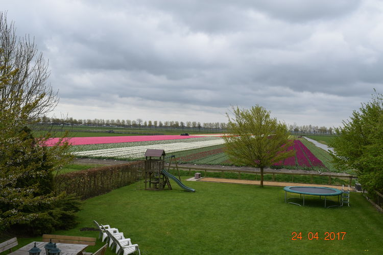Holiday house Silence II (134074), Noordbeemster, , North Holland, Netherlands, picture 29