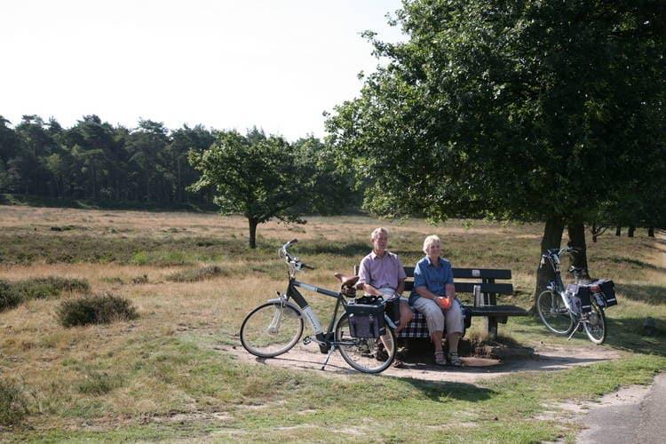 Ferienhaus Landgoed Het Grote Zand - Type D6 1 (257023), Hooghalen, , Drenthe, Niederlande, Bild 25