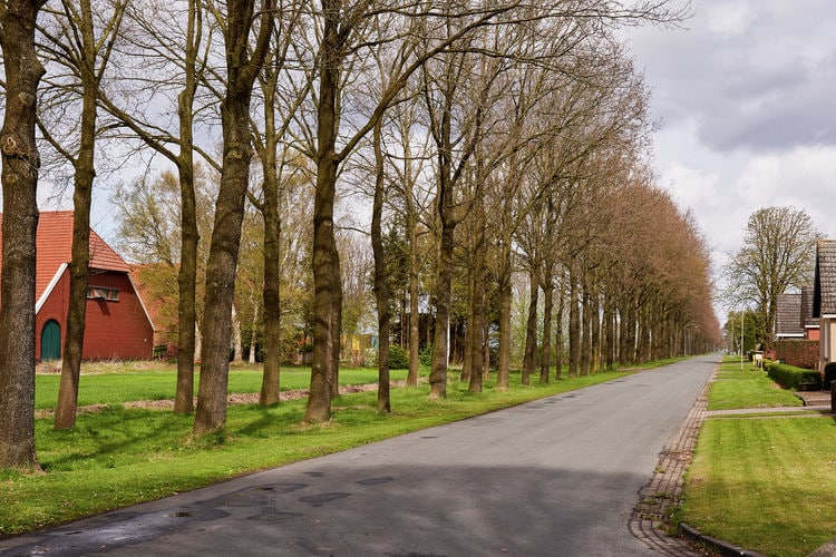 Holiday house De Monde (256975), Valthermond, , Drenthe, Netherlands, picture 28