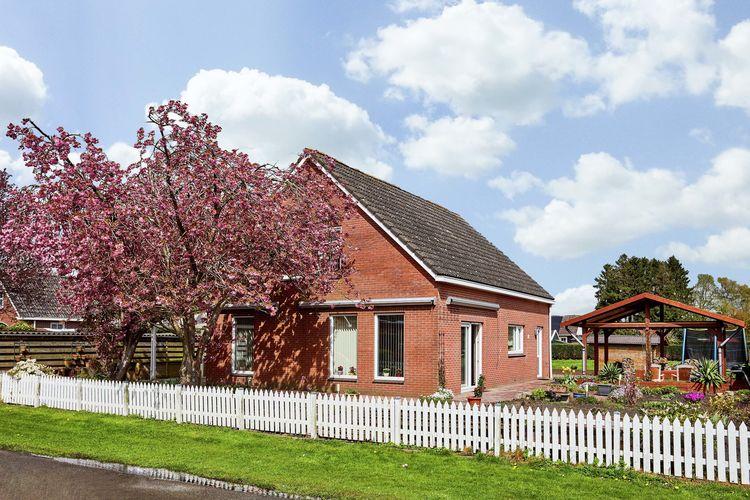 vakantiehuis Nederland, Drenthe, Valthermond vakantiehuis NL-7876-01