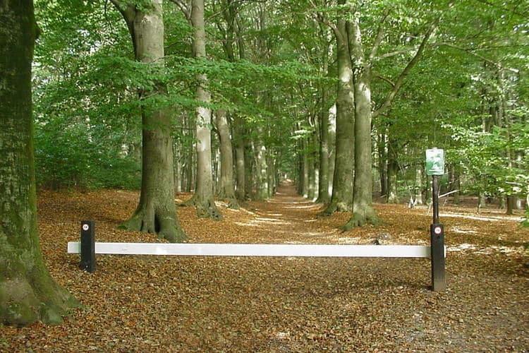 Ferienhaus Vakantiepark de Tabaksschuur 1 (257464), Elst UT, , Utrecht, Niederlande, Bild 19