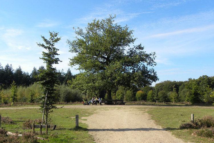 Ferienhaus Vakantiepark de Tabaksschuur 1 (257464), Elst UT, , Utrecht, Niederlande, Bild 20