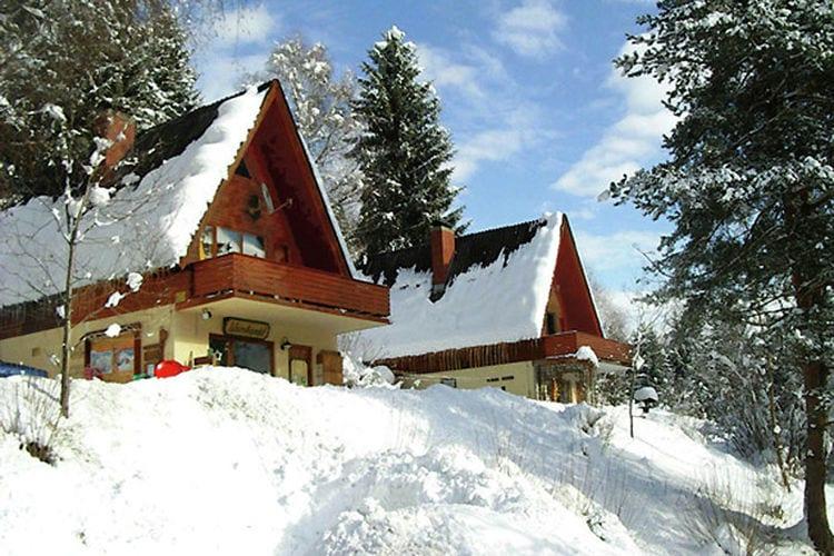 vakantiehuis Oostenrijk, Kaernten, Jenig vakantiehuis AT-9631-14