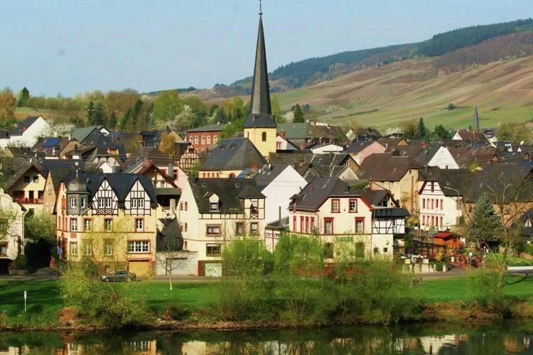 Ferienwohnung Henkel (255259), Traben-Trarbach, Mosel-Saar, Rheinland-Pfalz, Deutschland, Bild 22