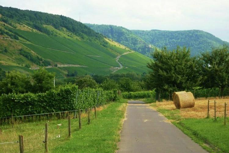 Ferienwohnung Henkel (255259), Traben-Trarbach, Mosel-Saar, Rheinland-Pfalz, Deutschland, Bild 27