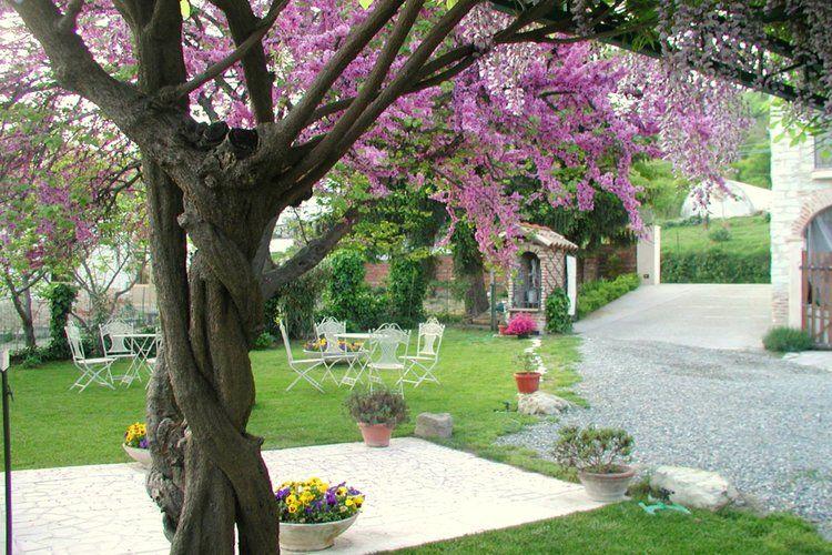Holiday apartment Glicine (177998), Camino, Alessandria, Piedmont, Italy, picture 11