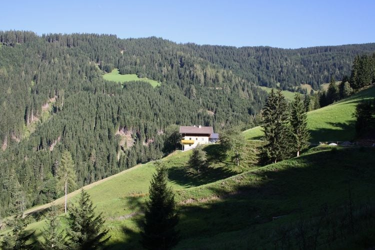 Ferienhaus Durchegg (253602), Wagrain, Pongau, Salzburg, Österreich, Bild 4