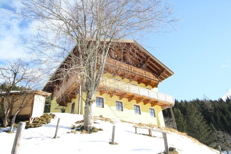 Ferienhaus Durchegg (253602), Wagrain, Pongau, Salzburg, Österreich, Bild 11