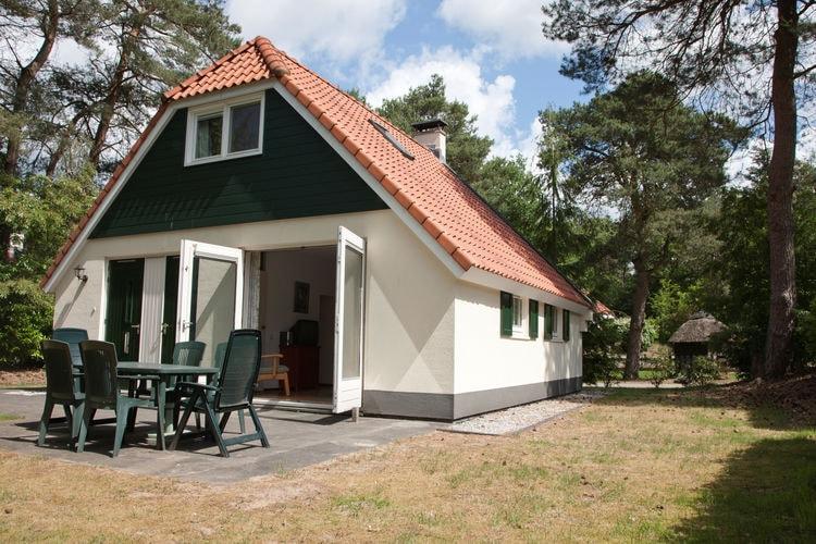 Boerderij met zwembad met wifi  Dieverbrug  Gezellige, ruime villa op rustig park midden in het bos