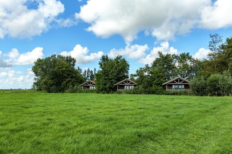 vakantiehuis Nederland, Friesland, Westergeest vakantiehuis NL-9295-01