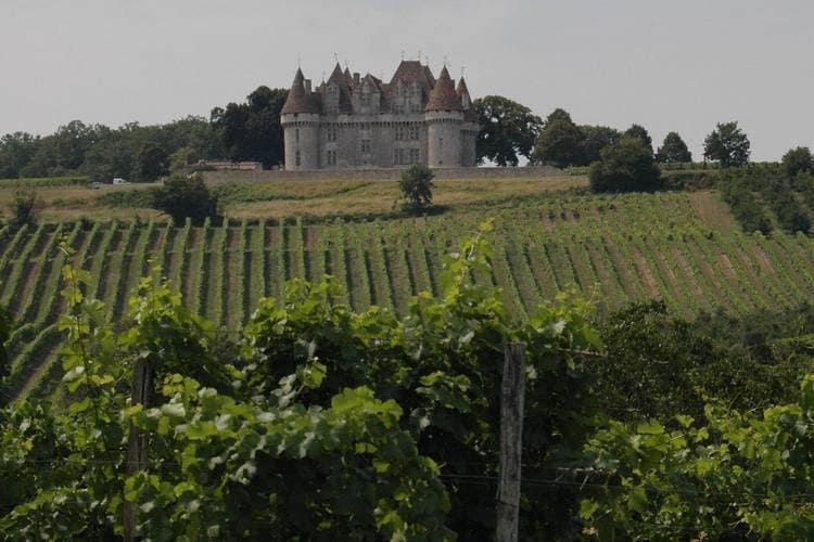 Maison de vacances Komfortables Chalet inmitten von Weinbergen in Dordogne (159962), Pineuilh, Gironde, Aquitaine, France, image 24