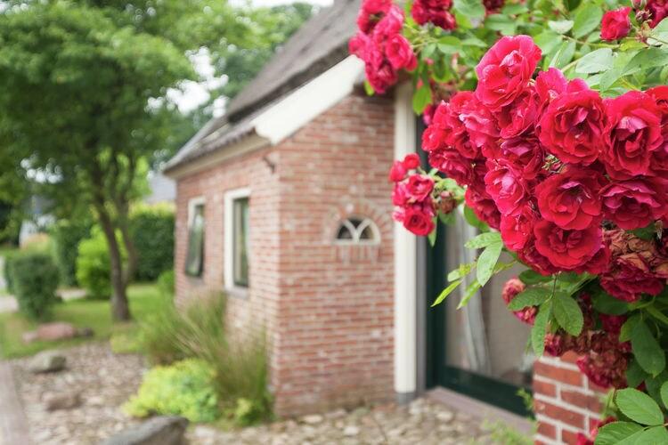 Holiday house De Leemstee (160537), Eext, , Drenthe, Netherlands, picture 3