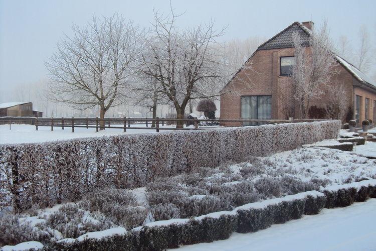 Appartement België, Oost Vlaanderen, Maldegem Appartement BE-9990-02