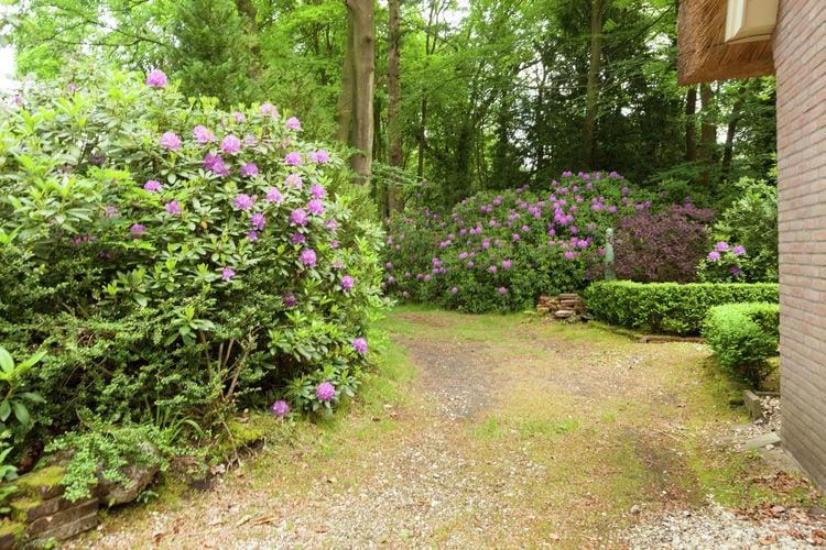 Ferienhaus Huisje op de Hei (256895), Huizen, , Nordholland, Niederlande, Bild 14