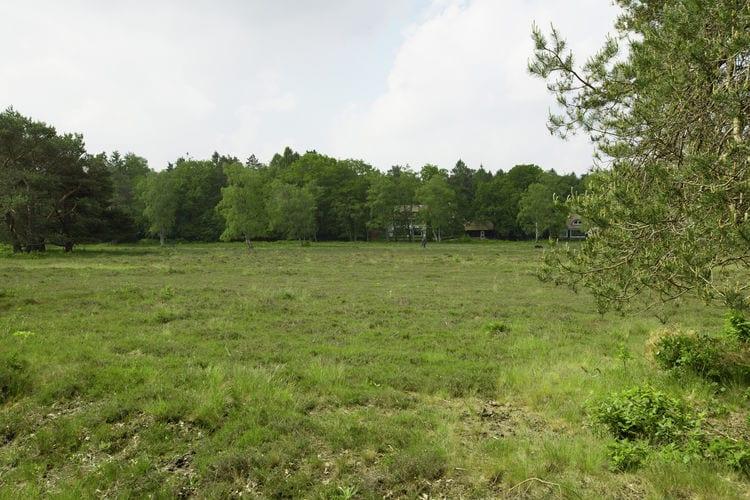 Ferienhaus Huisje op de Hei (256895), Huizen, , Nordholland, Niederlande, Bild 17
