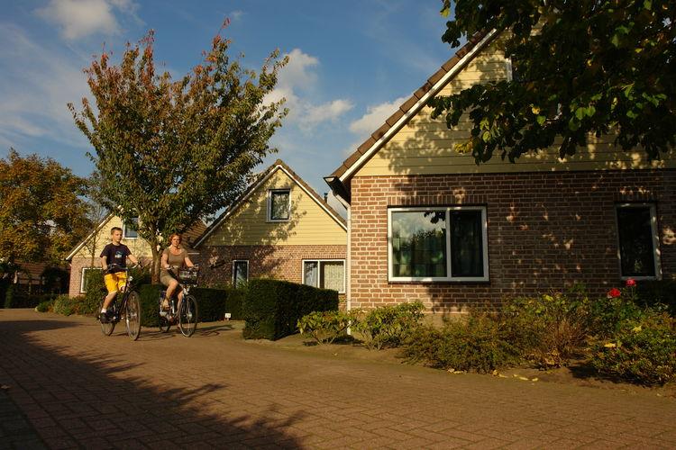 Ref: NL-6586-01 3 Bedrooms Price