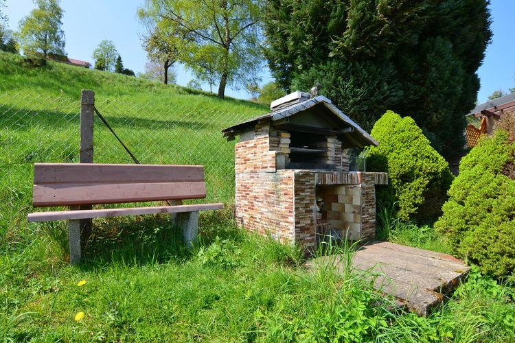 Ferienhaus Panoramablick (255554), Schönbrunn, Thüringer Wald, Thüringen, Deutschland, Bild 25