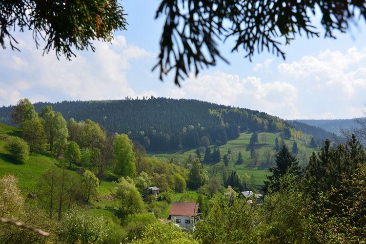 Ferienhaus Panoramablick (255554), Schönbrunn, Thüringer Wald, Thüringen, Deutschland, Bild 31