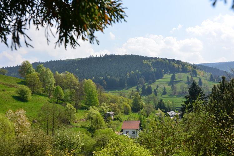 Ferienhaus Panoramablick (255554), Schönbrunn, Thüringer Wald, Thüringen, Deutschland, Bild 29