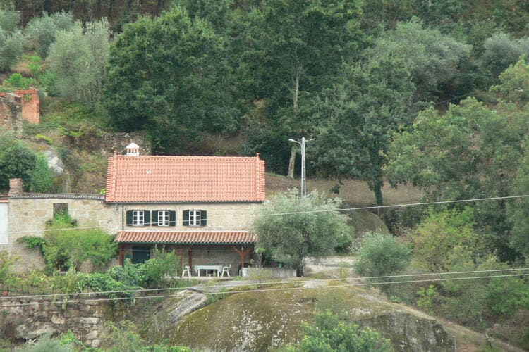 Holiday house Quinta Moitas (192193), Tábua, Costa Verde (PT), North-Portugal, Portugal, picture 5