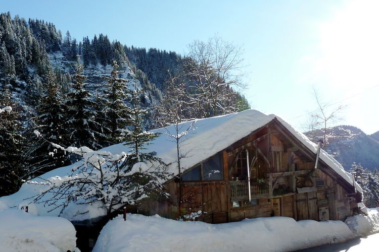 Chalet Frankrijk, Rhone-alpes, Taninges Chalet FR-74440-13