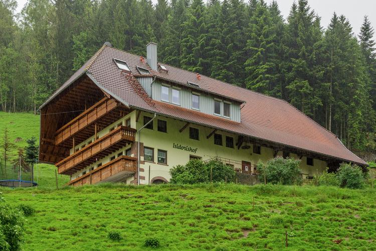 Duitsland | Baden-Wurttemberg | Boerderij te huur in Muhlenbach-Windenbach   met wifi 5 personen