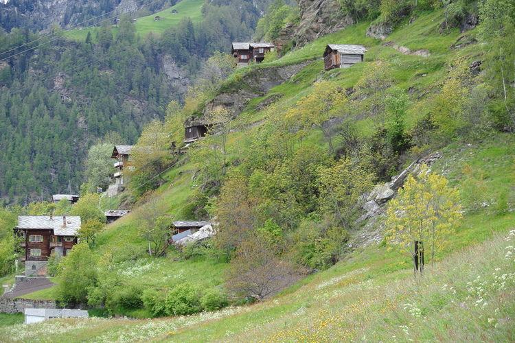 Appartement Zwitserland, Jura, Embd Appartement CH-3926-02
