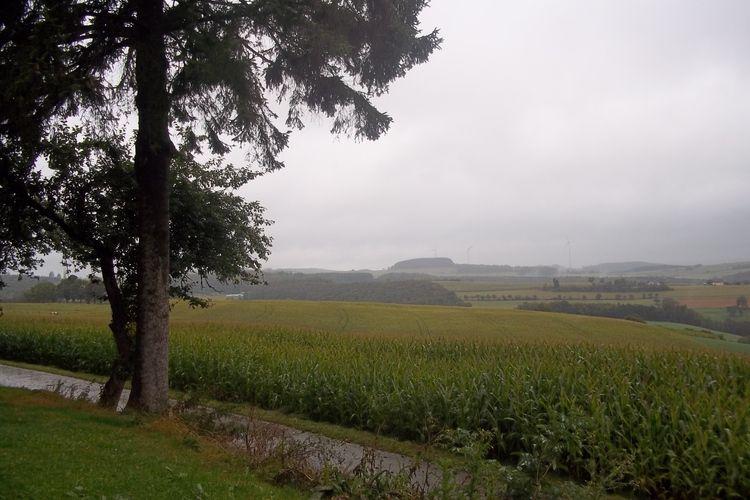 Ferienhaus Fernblick (216141), Lauperath, Südeifel, Rheinland-Pfalz, Deutschland, Bild 34