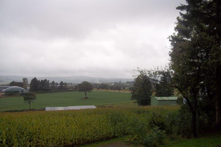 Ferienhaus Fernblick (216141), Lauperath, Südeifel, Rheinland-Pfalz, Deutschland, Bild 33