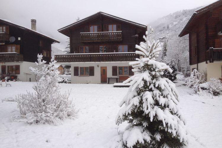 Vakantiehuizen Zwitserland | Jura | Appartement te huur in Fieschertal   met wifi 6 personen