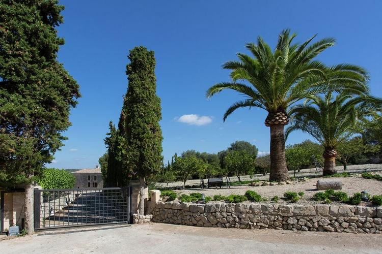 Ferienhaus Casita (218542), Lloret de Vistalegre, Mallorca, Balearische Inseln, Spanien, Bild 25