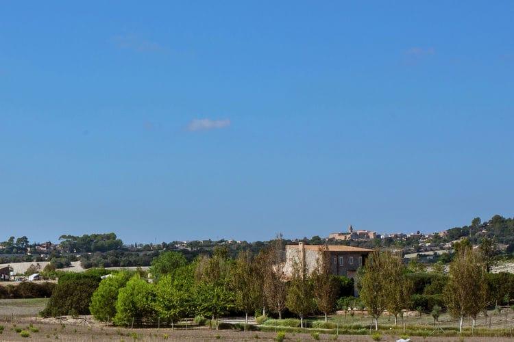 Ferienhaus Casita (218542), Lloret de Vistalegre, Mallorca, Balearische Inseln, Spanien, Bild 28