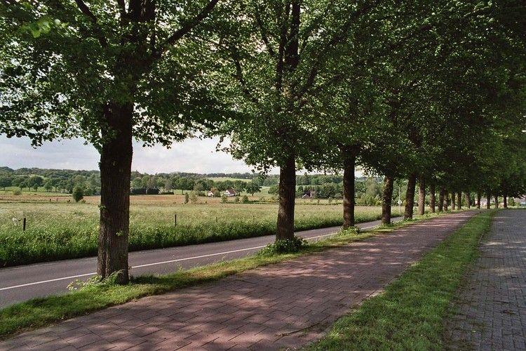 Ferienhaus De Zeven Heuvelen 4 (221192), Groesbeek, Arnheim-Nimwegen, Gelderland, Niederlande, Bild 26