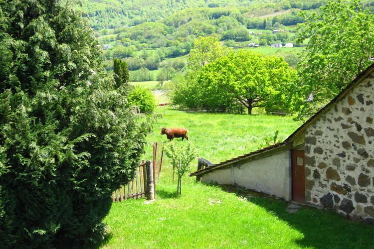 Ferienhaus Maison de vacances - VIC-SUR-CÈRE (255930), Vic sur Cère, Cantal, Auvergne, Frankreich, Bild 22
