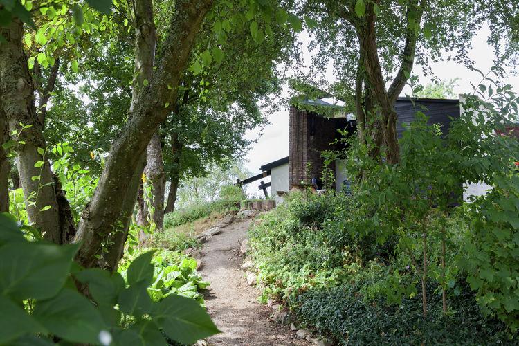Ferienhaus Pilmeroth (221854), Kleinich, Hunsrück, Rheinland-Pfalz, Deutschland, Bild 32