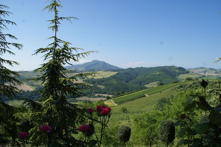 Ferienwohnung Casa Papavero (256836), Montelparo, Fermo, Marken, Italien, Bild 17