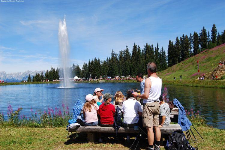 Ferienwohnung Obermoser (253603), Wagrain, Pongau, Salzburg, Österreich, Bild 27