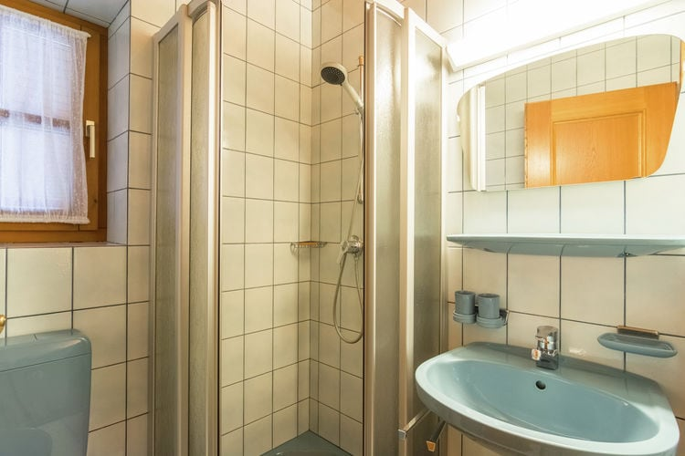 Ferienwohnung Obermoser (253603), Wagrain, Pongau, Salzburg, Österreich, Bild 16