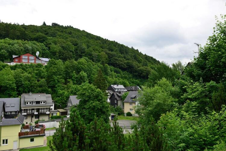 Ferienwohnung Willingen (225638), Willingen, Waldecker Land, Hessen, Deutschland, Bild 30