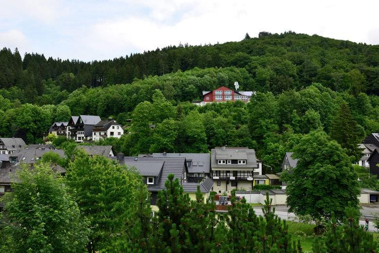 Ferienwohnung Willingen (225638), Willingen, Waldecker Land, Hessen, Deutschland, Bild 31