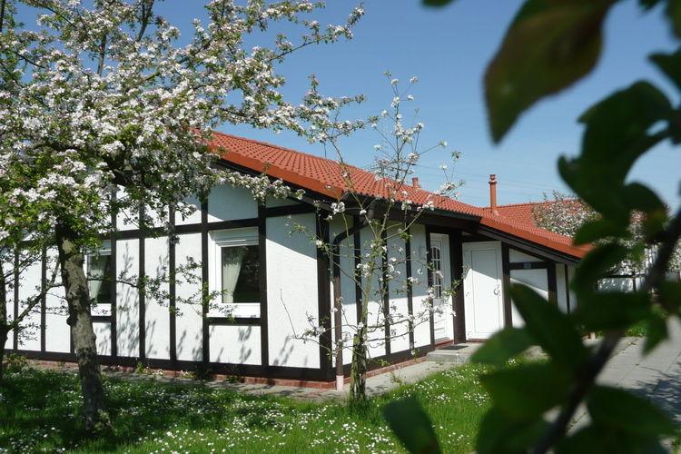 Ferienhaus Feriendorf Altes Land (226606), Hollern-Twielenfleth, Elbe-Weser, Niedersachsen, Deutschland, Bild 5